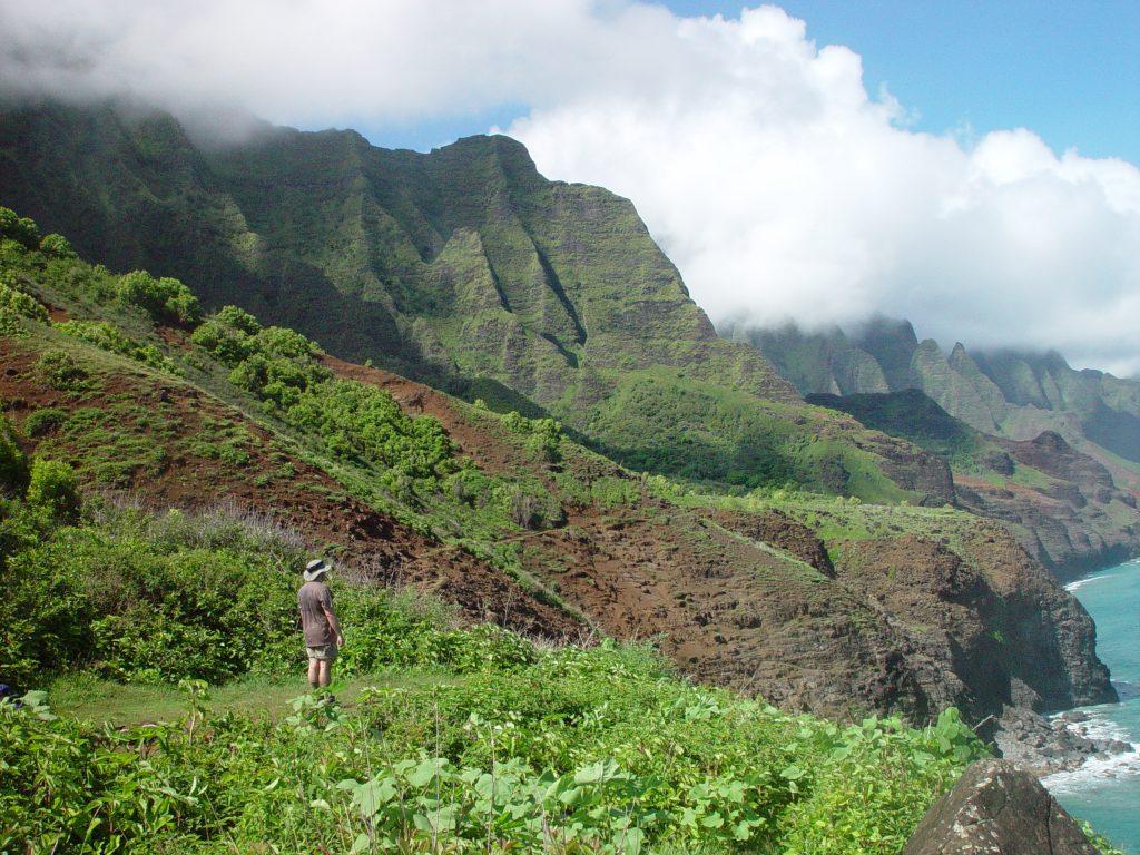Hawaii 2002-207