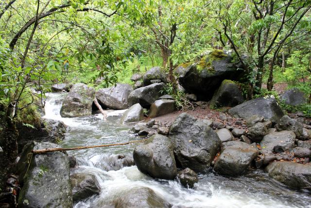 Photo of Kalalau Trail Hiker Swept Down Hanakoa Stream